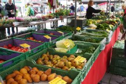 Market Oerlikon