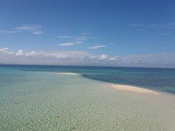 Panal Reef