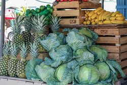 Immokalee State Farmers' Market