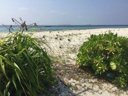 Tiny Island Marine Conservation Centre