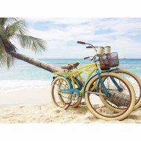 Bike Caribbean - Barbados, West Indies