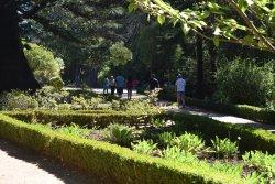 Isidora Cousino Park