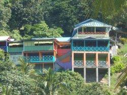 St. Lucia Rain Forest