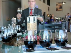 Twisted Vine Wine Tours, LLC