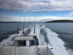 Mr Flathead Fishing Charters Tasmania