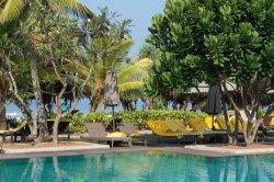 Stort och lummigt poolområde