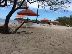 Costa Beach Umbrella Rentals
