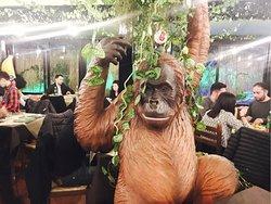 Gorilla Theme Pub