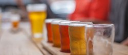 Take a Beer Tour in Traverse City