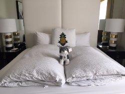 Adorable hotel