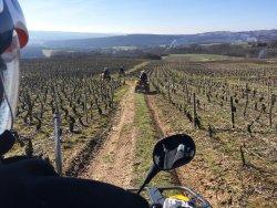 Quad Vignes et Chateaux