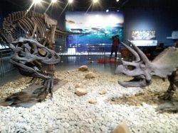 中国岩溶地质馆