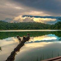 Rainforest Runaway Ecotours