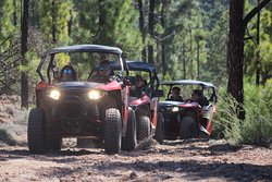 Buggy Safari Tenerife