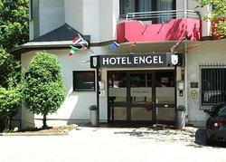 Hotel Engel im Salinental