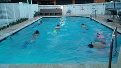 300 yard swim exercise