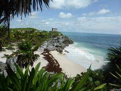 Vive Riviera Maya