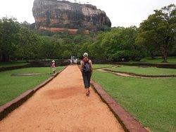 Lanka Tracker - Day Tours