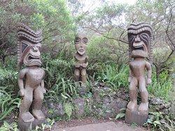 库拉植物园