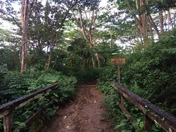 Moalepe Trail