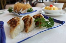 mixed dimsum dishes including grilled prok dumplings