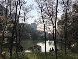 Wangyue Park