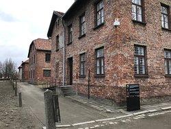 Viatour Auschwitz-Birkenau Museum Half-Day Tour