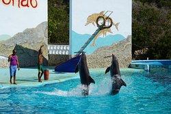 Aquarium Baconao