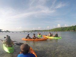 Clear Kayak Aruba
