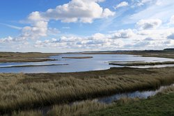 Norfolk Wildlife Trust Cley Marshes