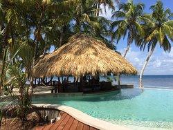Magical Island!