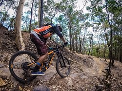 ‪Cairns Mountain Bike Tours‬