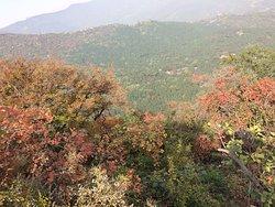 Fragrant Hills Park (Xiangshan Gongyuan)