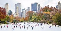 Central Park skating (245031723)