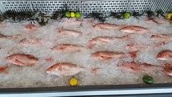 Very fresh fish for sale