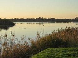 Laguna del Tarelo