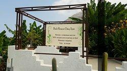 Bali Resort Day Spa