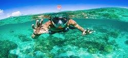 Kauai Snorkel Rentals
