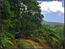 Caribbean Discovery Tours