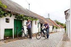 Mit dem E-Bike die Kellergassen der Umgebung entdecken