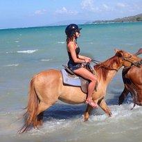 JusTours Jamaica - Horseback Ride 'n' Swim Tour