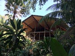 Hostel Cascada Verde