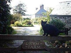 Drym Farm