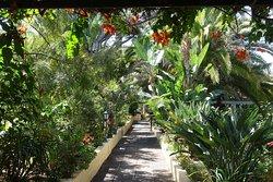Jardín de Orquídeas de Sitio Litre