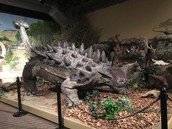 Glendive Dinosaur & Fossil Museum