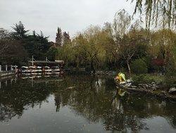 Yichuan Park