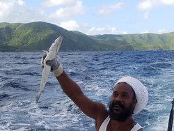 Irie Feelin Fishing & Private Charters