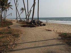 Vadanapilly Beach