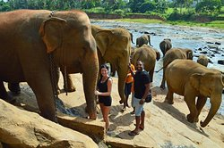 Sri Lanka Exclusive (SLE Tours)