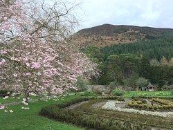 Mirehouse & Gardens